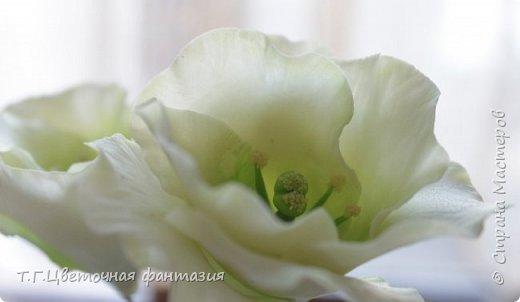 Всем привет!Поступил заказ на двух-уровневую композицию.Основные цветы:розы и эустомы.Остальное мелочевка.Вот решила отснять,пока они на одном уровне)))Это не все,которые будут,но одни из первых)) фото 7