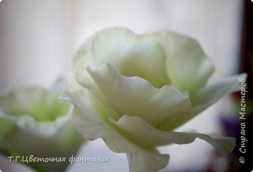 Всем привет!Поступил заказ на двух-уровневую композицию.Основные цветы:розы и эустомы.Остальное мелочевка.Вот решила отснять,пока они на одном уровне)))Это не все,которые будут,но одни из первых)) фото 4