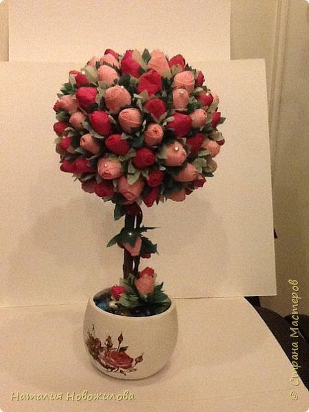 """Вот и у меня """"родился"""" топиарий из бутонов роз, давно мечтала о нем, наконец появился благородный повод - 70-ти летний юбилей моей первой учительницы. Спасибо огромное за МК marina_flora http://stranamasterov.ru/node/173296?c=favorite фото 2"""