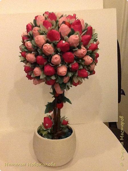 """Вот и у меня """"родился"""" топиарий из бутонов роз, давно мечтала о нем, наконец появился благородный повод - 70-ти летний юбилей моей первой учительницы. Спасибо огромное за МК marina_flora http://stranamasterov.ru/node/173296?c=favorite фото 1"""