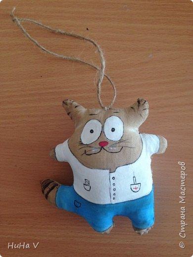 Котик-врач фото 2