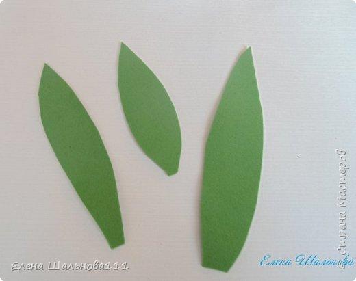Материалы: - белый фоамиран корейский о,5 мм - зеленый иранский фоамиран 1 мм - пастель : светло-желтая,светло-зеленая,светло-коричневая,темно-коричневая - проволока для бисероплетения 0,4 мм - утюг - клеевой пистолет и горячий клей - зубочистка - влажные салфетки - ножницы фото 19