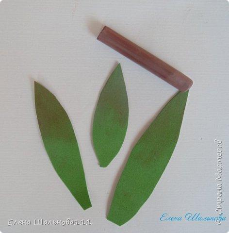 Материалы: - белый фоамиран корейский о,5 мм - зеленый иранский фоамиран 1 мм - пастель : светло-желтая,светло-зеленая,светло-коричневая,темно-коричневая - проволока для бисероплетения 0,4 мм - утюг - клеевой пистолет и горячий клей - зубочистка - влажные салфетки - ножницы фото 20