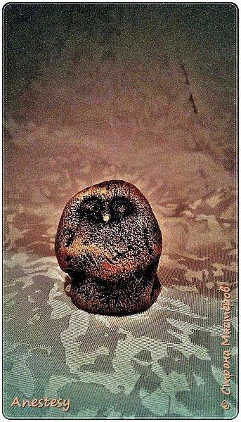 Приветствую Страна))а это мои совушки))лепились так, в перерывах между делом)) фото 4