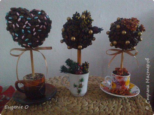 Наконец-то вырастила кофейные деревья!! Ура!! Блин, качество фото снова хромает...но, ничего, поправимо))) фото 1