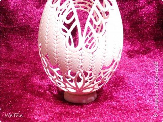 """Уж очень мне приглянулась царевна-лебедь у Марины meribesi """"Что осталось от яиц?!"""", что я решил и в свою копилку положить такую-же. Большое спасибо тебе, Марина!!! фото 4"""