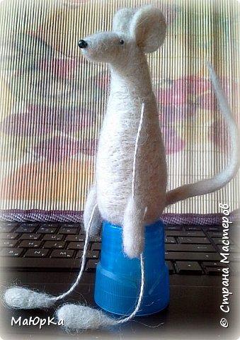 Вот такие крыски получились. Рост 10см. Сухое валяние. Полутонкая неотбеленная шерсть. фото 4