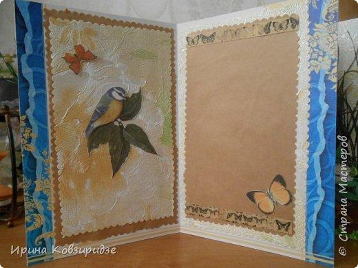 Эти открытки я сделала с перьями павлина, они напоминают мне траву. Напридумывала, что могла и из чего могла. фото 8