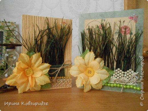 Эти открытки я сделала с перьями павлина, они напоминают мне траву. Напридумывала, что могла и из чего могла. фото 1