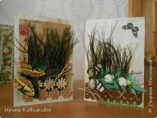 Эти открытки я сделала с перьями павлина, они напоминают мне траву. Напридумывала, что могла и из чего могла. фото 7