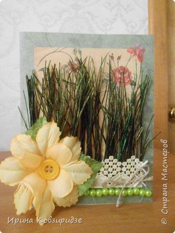 Эти открытки я сделала с перьями павлина, они напоминают мне траву. Напридумывала, что могла и из чего могла. фото 4