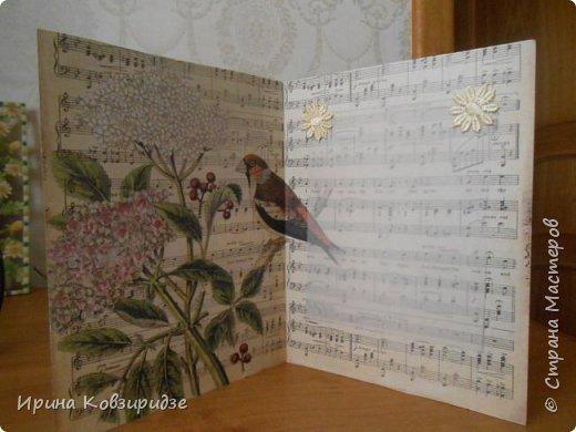 Эти открытки я сделала с перьями павлина, они напоминают мне траву. Напридумывала, что могла и из чего могла. фото 5
