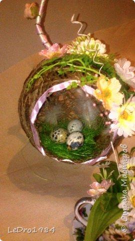 Гнездо-топиарий фото 4