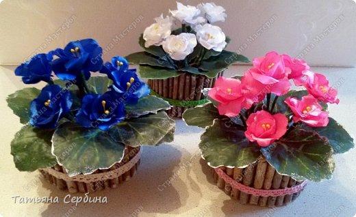 Очень люблю фиалки, но настоящие у меня сейчас не цветут. Сделала яркие цветущие фиалочки из лент - вот такие получились фото 1