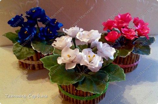 Очень люблю фиалки, но настоящие у меня сейчас не цветут. Сделала яркие цветущие фиалочки из лент - вот такие получились фото 3