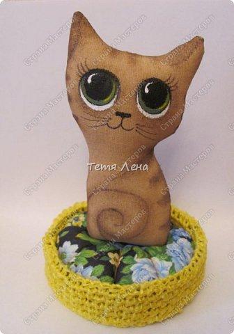 Кофейный котик фото 1