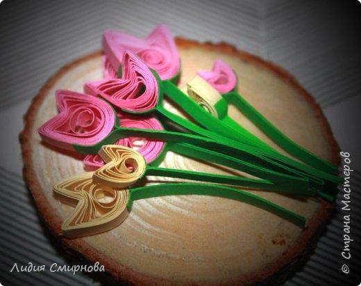 Микро-тюльпаны фото 1