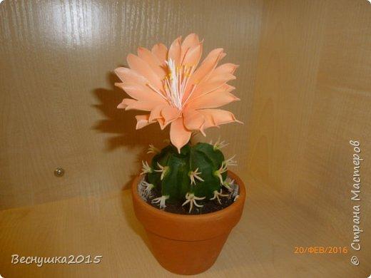 Добрый вечер, жители страны мастеров! Хочу поделиться с вами своей работой. Этот цветущий кактус я сделала в подарок для очень хорошего человека на долгую память обо мне. Думаю понравится. фото 2