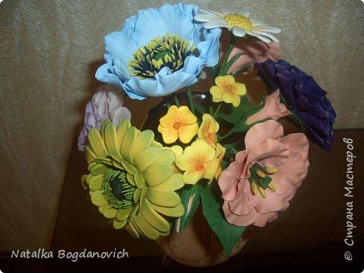 мои первые крупные розы фото 7