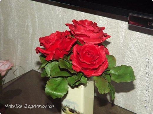 мои первые крупные розы фото 4