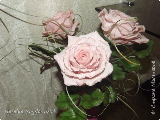 мои первые крупные розы фото 1