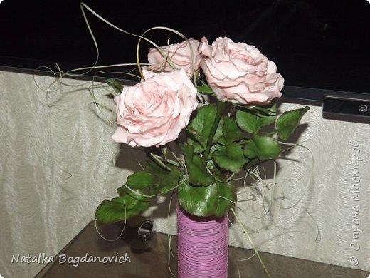 мои первые крупные розы фото 2