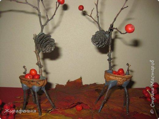 С девочками Варей и внучкой Машей (3,5 года) мы смастерили таких прекрасных оленей. Идею нашла в интернете. Покушав грецких орехов, собрав в сквере палочки на рожки и ножки, собрав рябину, всё равно пришлось побродить в поисках шишек, похожих на голову оленей. Они у нас получились девочками и у них даже есть серёжки в виде ягодок рябины! Это задумка Вари. фото 2