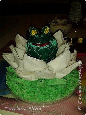 Лягушка царевна фото 3