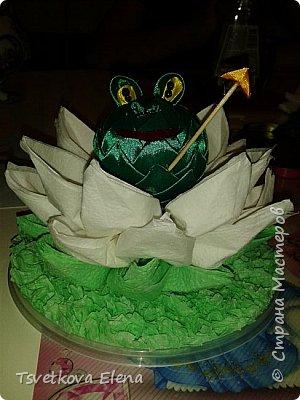 Лягушка царевна фото 2
