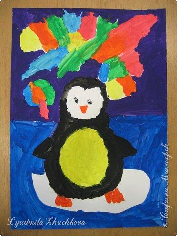 пингвины фото 2