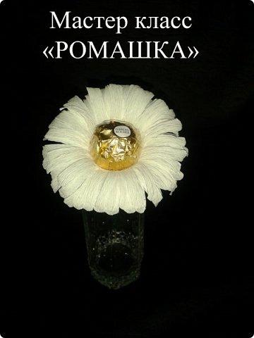 """Мастер класс """"РОМАШКА"""" фото 1"""