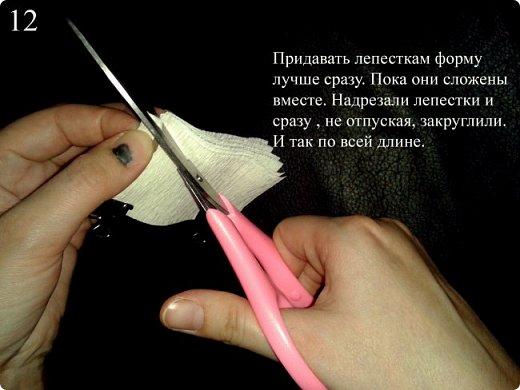 """Мастер класс """"РОМАШКА"""" фото 13"""
