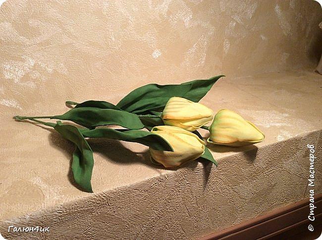 Всем добрый день!!!! Так захотелось весны и тепла, что решила сделать себе тюльпаны... Тонировала впервые, выкройку лепестков и листьев рисовала сама по памяти, прошу строго не судить. Приятного просмотра.... фото 3