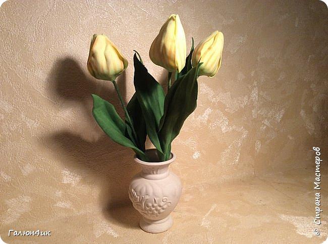 Всем добрый день!!!! Так захотелось весны и тепла, что решила сделать себе тюльпаны... Тонировала впервые, выкройку лепестков и листьев рисовала сама по памяти, прошу строго не судить. Приятного просмотра.... фото 5