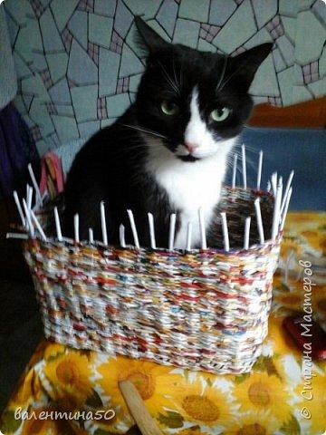 мои первые плетушки фото 5