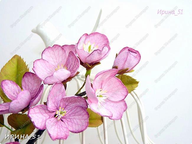 Здравствуйте! Приятно видеть Вас у себя в гостях. Сегодня у меня немного цветочков, так уже хочется весны и весеннего настроения.  Приглашаю к просмотру.  Веточка сакуры по Мк Натальи Вознюк.  фото 1