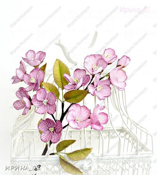 Здравствуйте! Приятно видеть Вас у себя в гостях. Сегодня у меня немного цветочков, так уже хочется весны и весеннего настроения.  Приглашаю к просмотру.  Веточка сакуры по Мк Натальи Вознюк.  фото 2