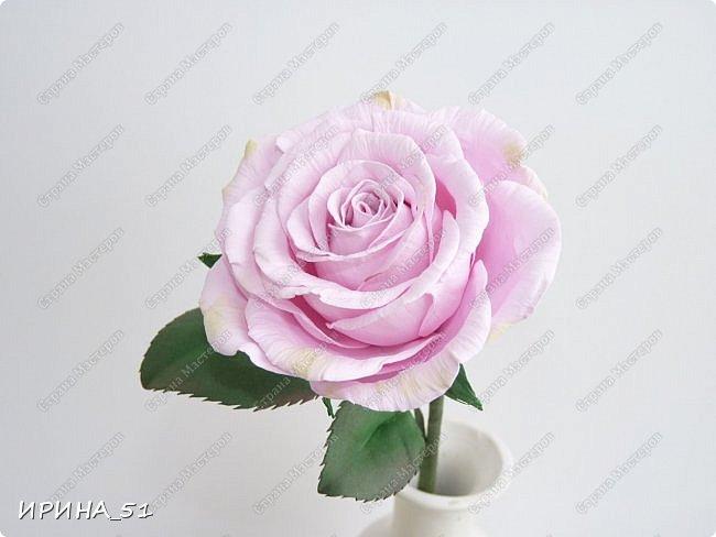 Здравствуйте! Приятно видеть Вас у себя в гостях. Сегодня у меня немного цветочков, так уже хочется весны и весеннего настроения.  Приглашаю к просмотру.  Веточка сакуры по Мк Натальи Вознюк.  фото 6