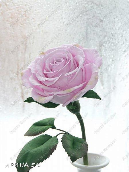 Здравствуйте! Приятно видеть Вас у себя в гостях. Сегодня у меня немного цветочков, так уже хочется весны и весеннего настроения.  Приглашаю к просмотру.  Веточка сакуры по Мк Натальи Вознюк.  фото 5