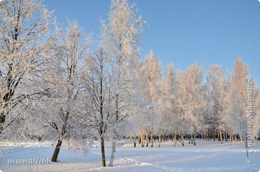 Зима! фото 1
