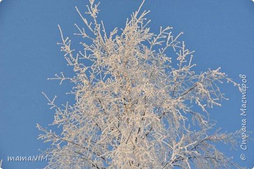 Зима! фото 2