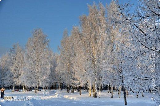 Зима! фото 3