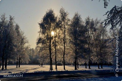Зима! фото 4