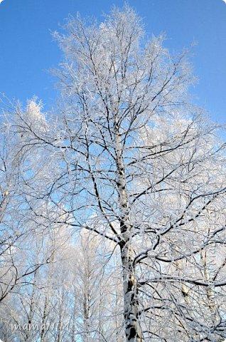 Зима! фото 6