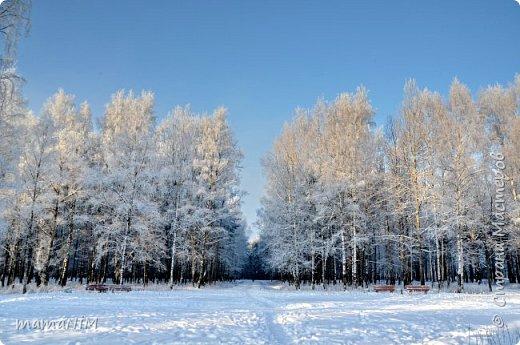 Зима! фото 7