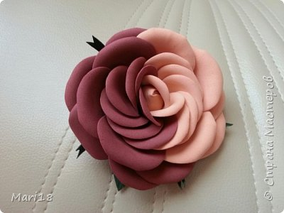 Роза инь-янь фото 1