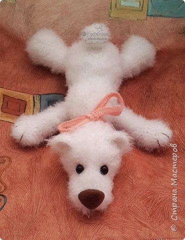 Ленивый медвежонок Сенька фото 1