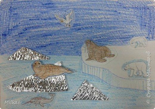 """занятие""""Животные Арктики"""" МК фото 1"""