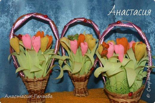 Заказали у меня 3 корзинки вот с такими тюльпанами. Цвет слегка отличается,в живую он насыщенней!!! В каждой по 11 тюльпанов. В каждом бутончике конфетка Аленка. фото 2