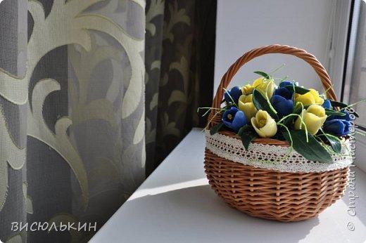 мини-тюльпаны фото 4